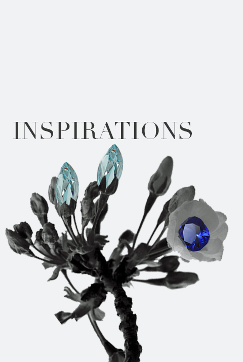 inspiration-porfolio